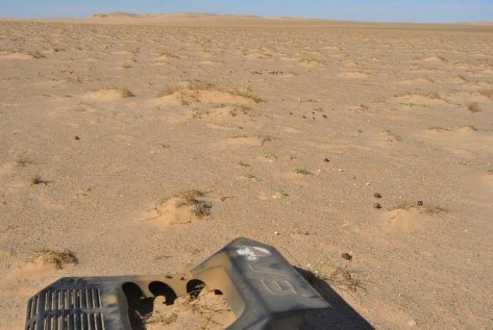 Durch die Wüste für den guten Zweck
